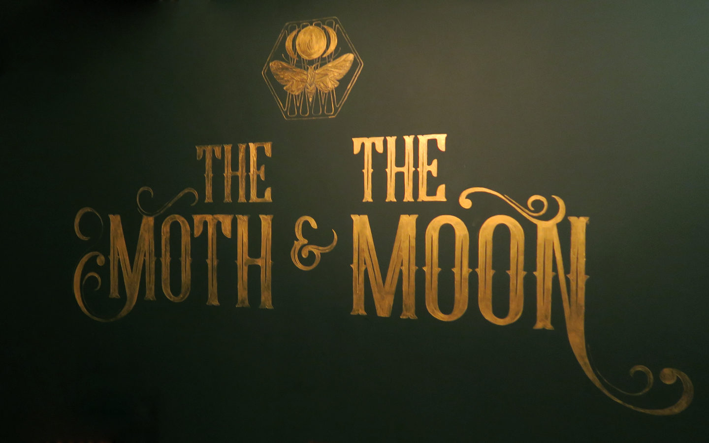 the moth and the moon logo