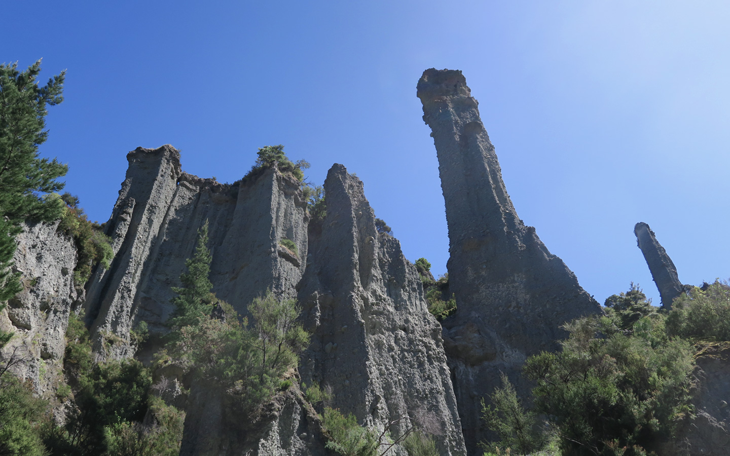 putanguira pinnacles in cape palliser in new zealand