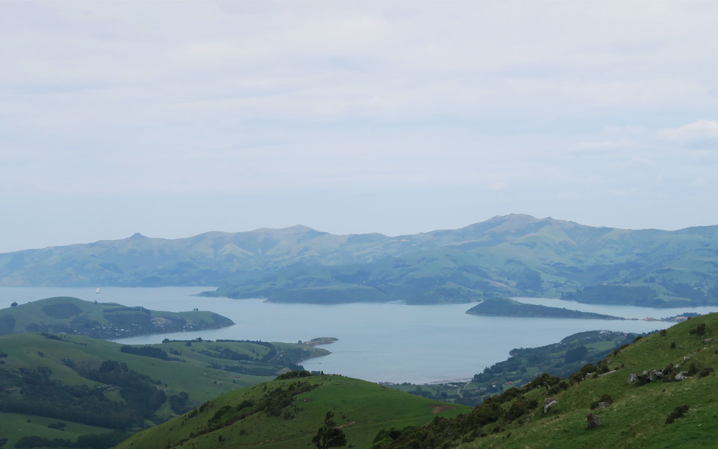 akaroa bay in the south island on new zealand
